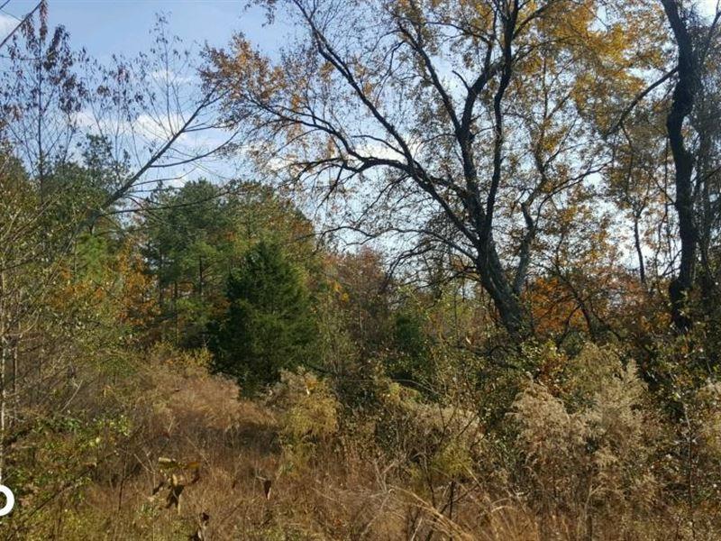 Ashemont Road Recreational Land : Raeford : Hoke County : North Carolina