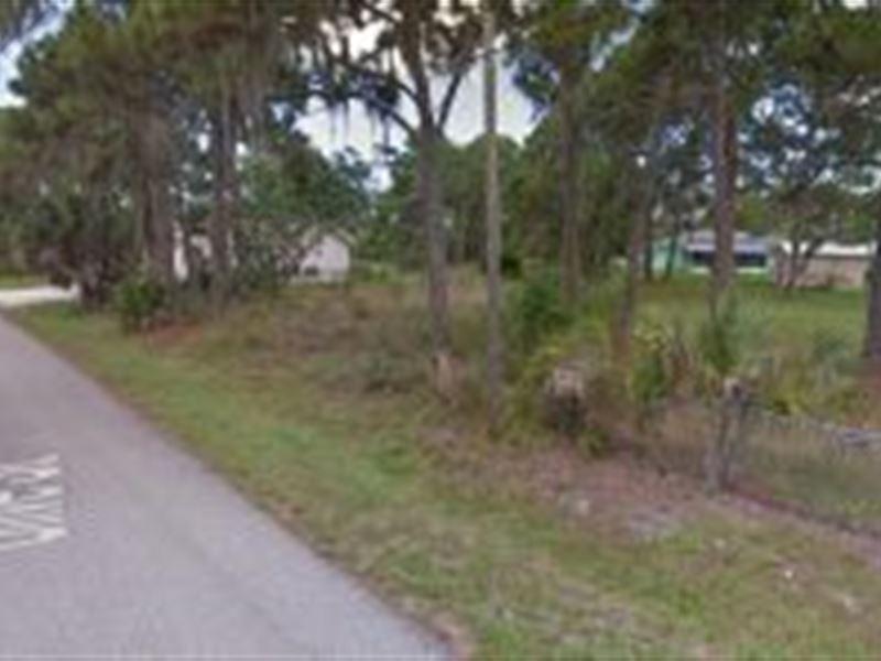 Sarasota County Florida 50 000 Lot For Sale