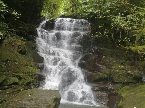 Waterfalls- 7 Ac. Jungle,Woods, Pas : Pejibaye De Turrialba : Costa Rica