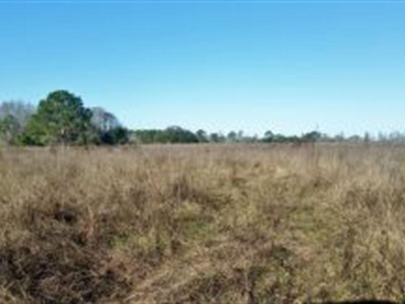 Lake county florida 17 000 lot for sale groveland for Rural development florida