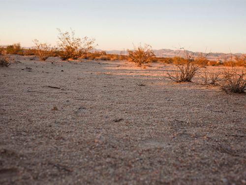 Serene Sunsets : Twentynine Palms : San Bernardino County : California