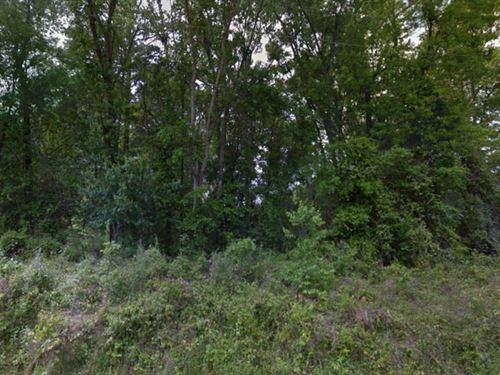 Leon County, Fl $30,000 Neg Each : Tallahassee : Leon County : Florida