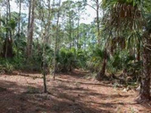 Martin County, Florida $10,000 : Indiantown : Martin County : Florida