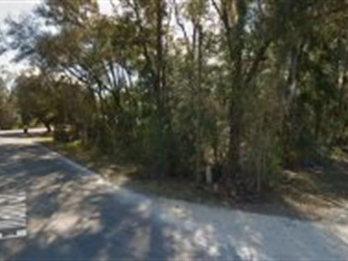 Levy County, Florida $10,000 : Bronson : Levy County : Florida