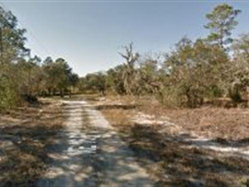 Levy County, Florida $24,500 : Williston : Levy County : Florida