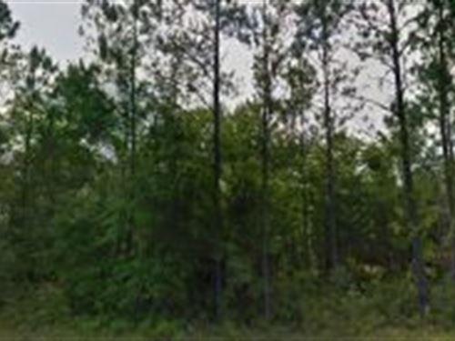 Nassau County, Florida $65,000 : Bryceville : Nassau County : Florida