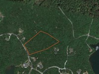 Large 5 Acre Wooded Lot In Establis : Cleveland : Pickens County : South Carolina