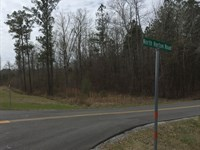 Wooded Lot At Beeswax Creek : Wilsonville : Shelby County : Alabama