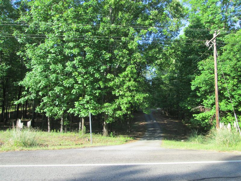 Lots Of Road Front, Chop Up Special : Gray : Jones County : Georgia