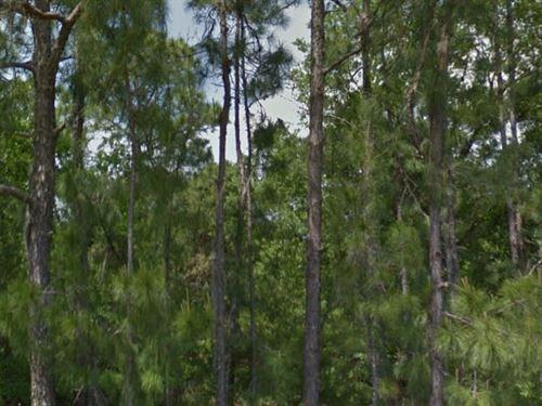 Polk County, Florida $10,000 : Polk City : Polk County : Florida