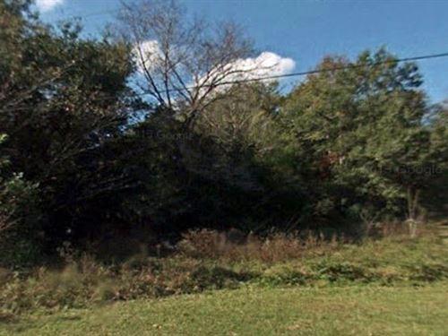 Marion County, Florida $10,000 Neg : Summerfield : Marion County : Florida