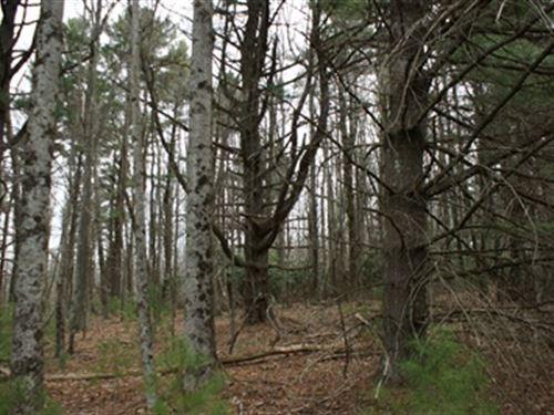 8.254 Acres Near Golf Course : Fancy Gap : Carroll County : Virginia