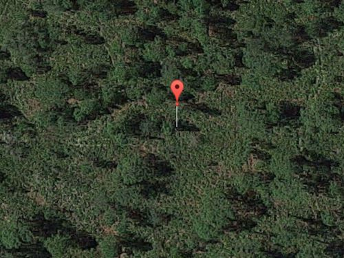 Polk County, Florida $6,500 : Lake Wales : Polk County : Florida