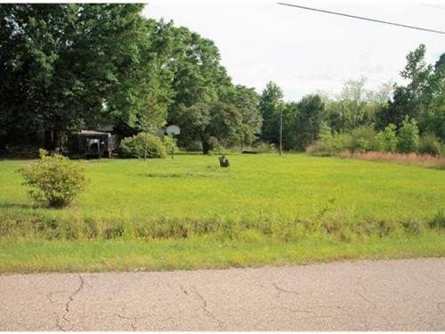 8.09 Acres In Independence La : Independence : Tangipahoa Parish : Louisiana