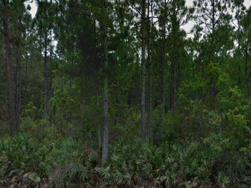 Polk County, Florida $17,500 Neg : Polk City : Polk County : Florida