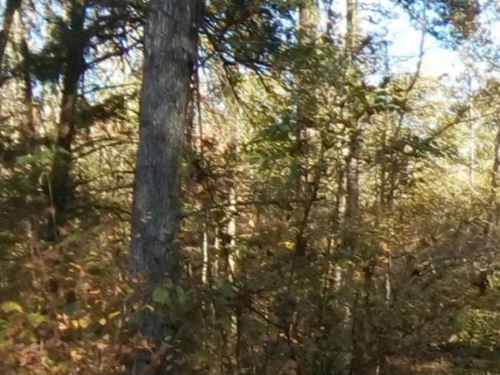 Saline County, Arkansas $85,000 : Hot Springs Village : Saline County : Arkansas