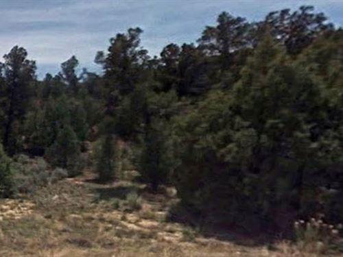 Sandoval County, Nm $16,000 Neg : Regina : Sandoval County : New Mexico