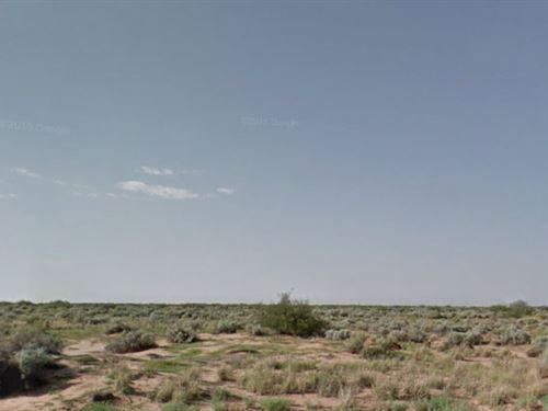 El Paso County, Tx $20,000 Neg Each : Clint : El Paso County : Texas