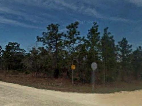 Hernando County, Fl $35,500 Neg : Brooksville : Hernando County : Florida
