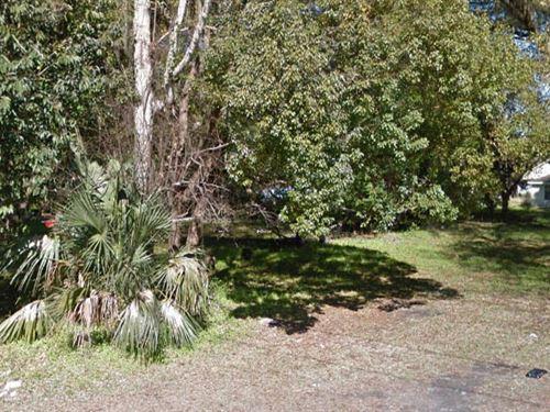 Alachua County, Fl $39,500 Neg : Gainesville : Alachua County : Florida