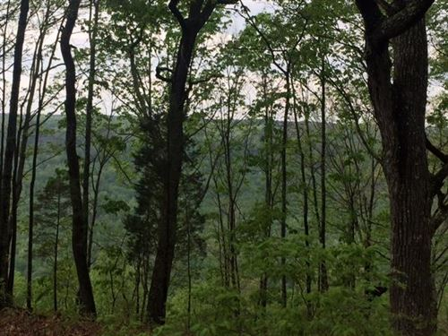 19.6 Pristine Bluff Views : South Pittsburg : Marion County : Tennessee
