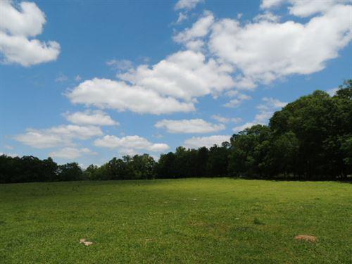 14.04 Acres On Smokey Road : Newnan : Coweta County : Georgia