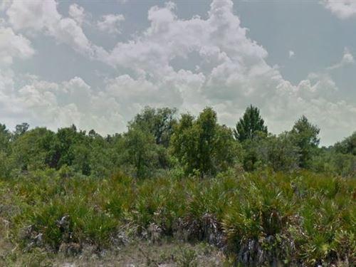 Polk County, Fl $20,000 Neg : Frostproof : Polk County : Florida