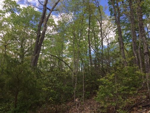 5.01+/- Acres Unrestricted / Creek : McMinnville : Warren County : Tennessee