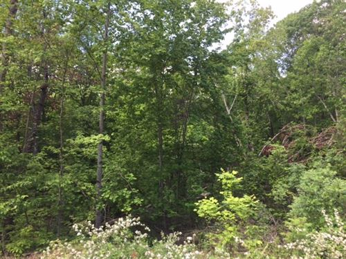 5.00+/- Acres Near Nick-A-Jack Lake : South Pittsburg : Marion County : Tennessee