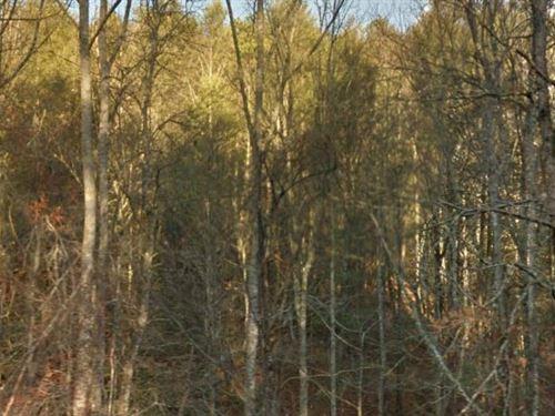 Henderson County, Nc $135,000 Neg : Hendersonville : Henderson County : North Carolina