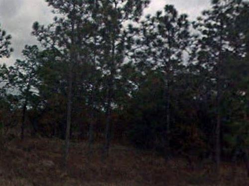 Levy County, Florida $20,000 Neg : Dunnellon : Levy County : Florida