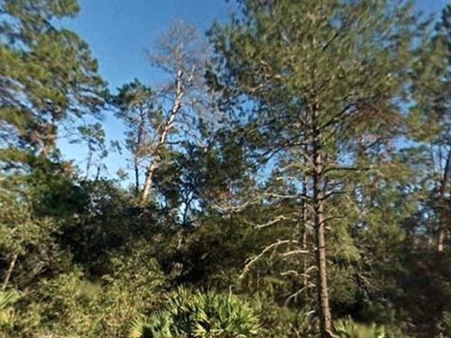 Marion County, Florida $25,000 : Fort McCoy : Marion County : Florida