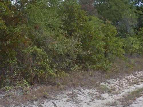 Henderson County, Texas $13,500 Neg : Mabank : Henderson County : Texas