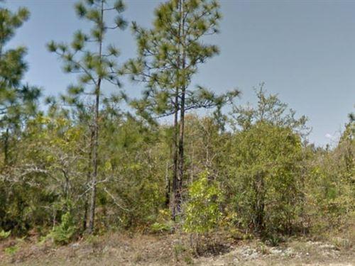 Walton County, Florida $55,000 : Defuniak Springs : Walton County : Florida
