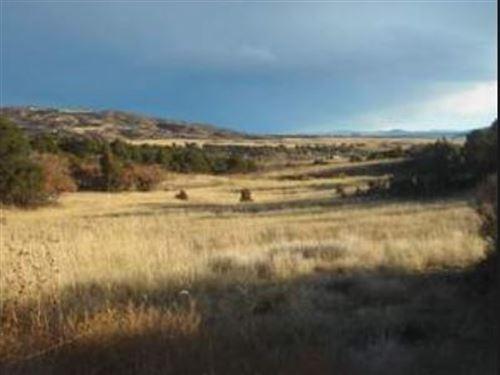 Sandoval Co, New Mexico $25,500 Neg : Rio Rancho : Sandoval County : New Mexico