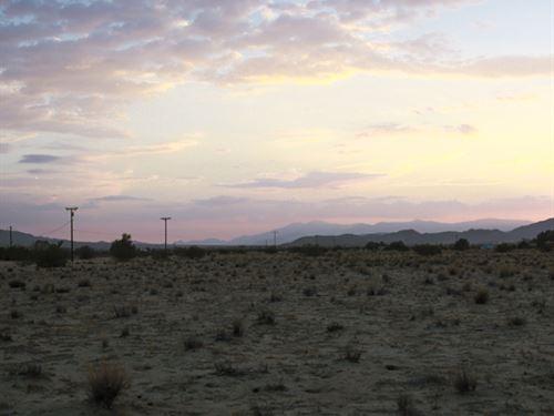 This Land Is Steal At This Price : Twentynine Palms : San Bernardino County : California