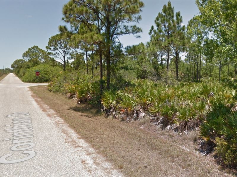 .18 Acres In Punta Gorda, FL : Punta Gorda : Charlotte County : Florida