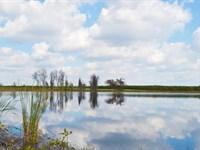 Big Lake Gum Lakefront Homesites : Lake Wales : Polk County : Florida