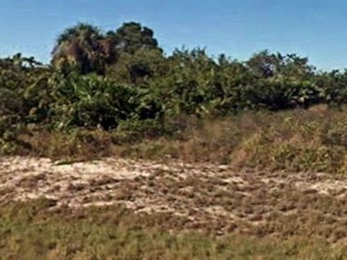 Hendry County, Fl $18,000 Neg : Port Labelle : Hendry County : Florida