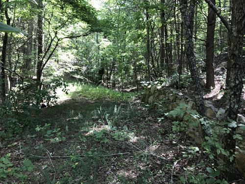8.18 +/- Wooded Acres, Rydal : Rydal : Bartow County : Georgia