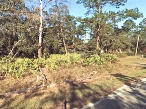 Lake County, Fl $45,000 Neg : Paisley : Lake County : Florida