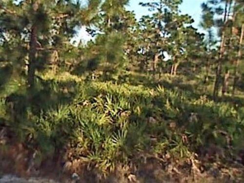 Polk County, Fl $12,999 Neg : Lake Wales : Polk County : Florida