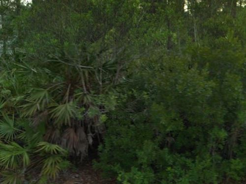 Flagler County, Fl $24,999 Neg : Palm Coast : Flagler County : Florida