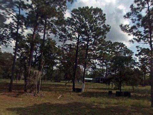 Levy County, Florida $32,000 Neg : Morriston : Levy County : Florida