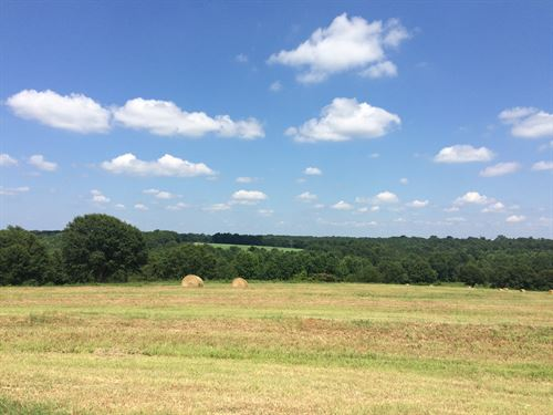 10 Acres With Beautiful Views : Troy : Pike County : Alabama