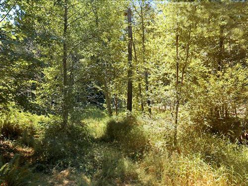 Beautiful Lot On Lake Lucinda : Olympia : Thurston County : Washington