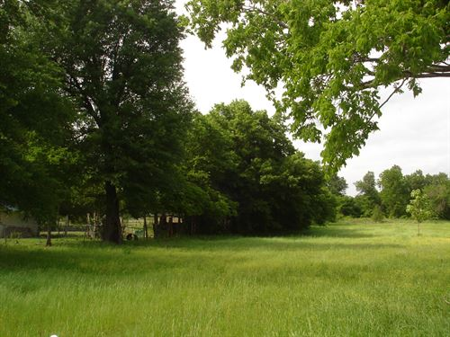 Adjoining Lots, Commercial Possible : Paris : Lamar County : Texas