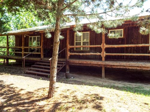 Forested Home With Turkey And Deer : Crescent : Oklahoma County : Oklahoma