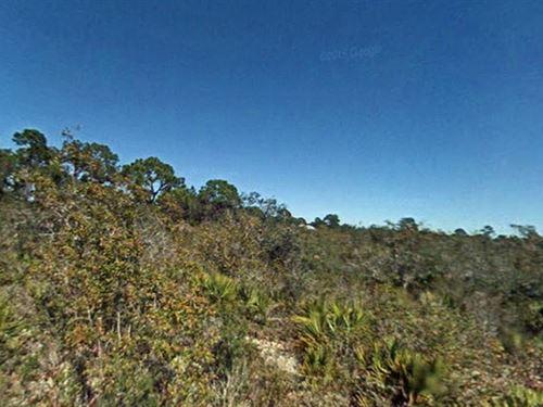 Highlands County, Fl $38,000 Neg : Sebring : Highlands County : Florida