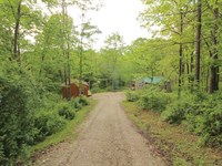 Rouse Rd - 6 Acres : Clarington : Monroe County : Ohio